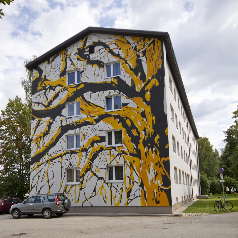 Puu / Turu 9, Tartu